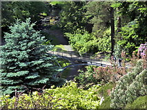 NU0702 : Iron Bridge, Cragside by PAUL FARMER