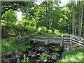 NU0701 : Footbridge, Cragside by PAUL FARMER
