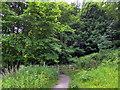 NU2405 : Gate on Footpath near Warkworth by PAUL FARMER