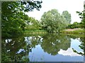 SO9562 : The Mere at Mere Green, Hanbury, Worcestershire by Jeff Gogarty
