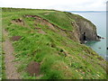 SM8517 : The Pembrokeshire Coast Path near Madoc's Haven by Dave Kelly