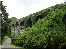 X3398 : Durrow Viaduct by Jonathan Thacker