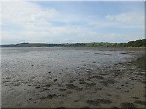X1278 : The Blackwater Estuary below Kinsalebeg church by Jonathan Thacker