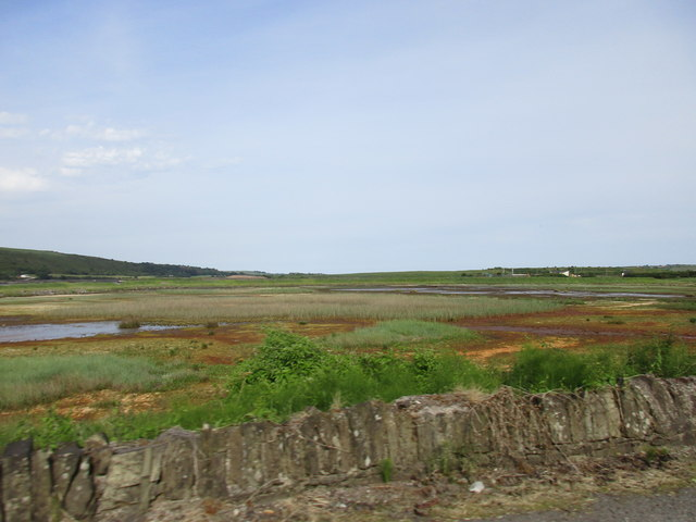 The Youghal Mudflats