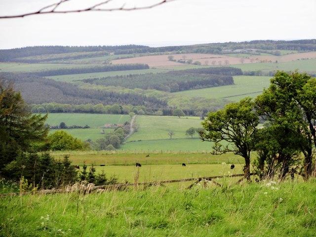View across the Derwent Valley