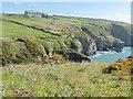 SM7524 : The Pembrokeshire Coast Path near St Non's Bay by Dave Kelly