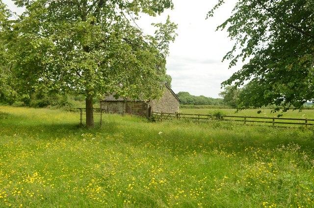 Rural Scene near Tissington, Derbyshire