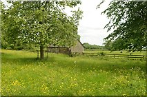 SK1751 : Rural Scene near Tissington, Derbyshire by Andrew Tryon