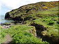 SM7830 : The Pembrokeshire Coast Path near Aber-pwll by Dave Kelly