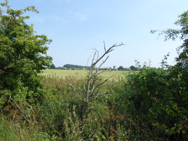 Looking across the Borough boundary at Furze House Farm