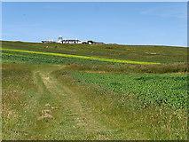 SY6869 : The Crown Estate Field by David Dixon