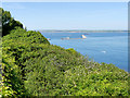 SY7072 : View from Grove towards Portland Harbour by David Dixon