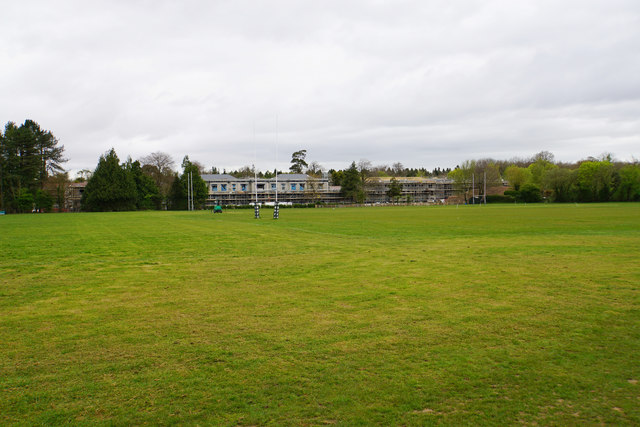 Rugby pitches by Redwood Lodge