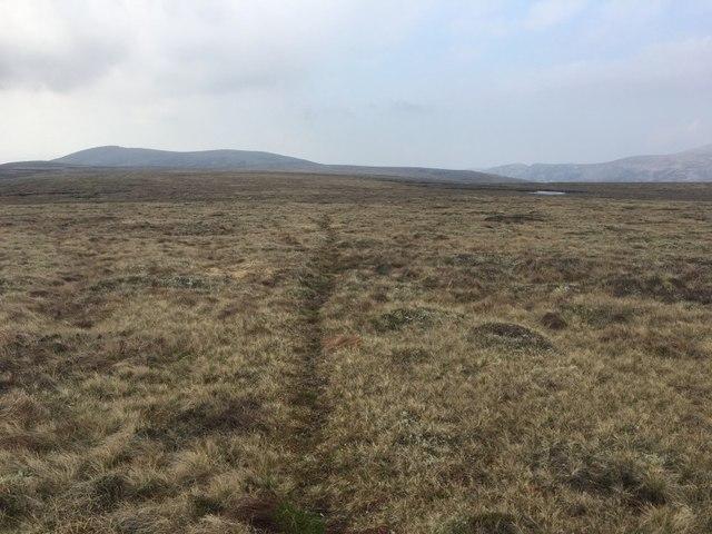 Path on Mòine Bhealaidh