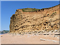 SY4689 : Cliff and Beach between Burton Bradstock and West Bay by David Dixon