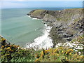 SM8433 : The Pembrokeshire Coast Path near Pwll Whiting by Dave Kelly