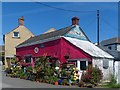 SW7012 : Colourful house and display, Lizard, Cornwall by Robin Drayton
