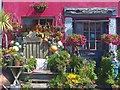 SW7012 : Colourful house and display, Lizard, Cornwall (a close look) by Robin Drayton