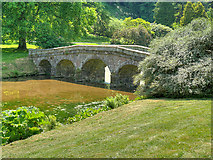 ST7733 : The Palladian Bridge, Stourhead Gardens by David Dixon