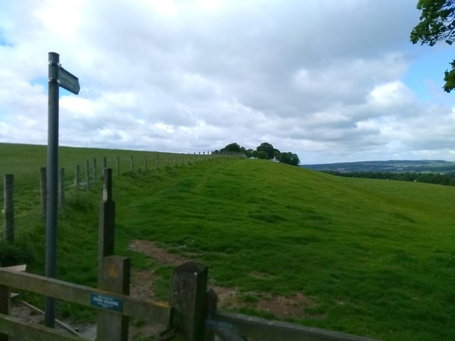 Footpath Sign, Gibside