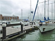 SZ6299 : Portsmouth, marina by Mike Faherty
