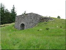 NN7754 : Tomphubil Lime Kiln by G Laird