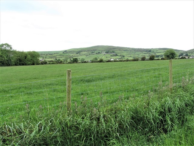 Improved grassland west of the Benraw Road
