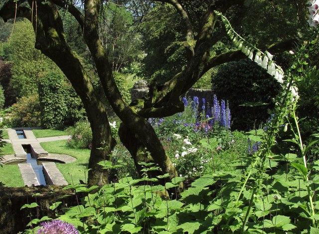 Garden at Coleton Fishacre