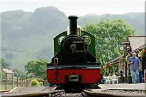 NY1700 : At Dalegarth by Peter Trimming