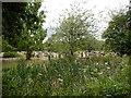 SU9277 : Oakley Green Cemetery by James Emmans