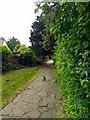 TV6099 : Path in Manor Gardens by PAUL FARMER