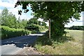 TL9466 : Norton Road by John Myers