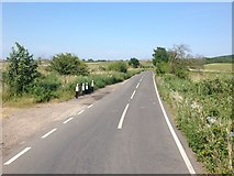 TR0863 : Seasalter Lane, near Seasalter by Chris Whippet