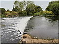 SP0647 : River Avon Ford and Weir at Offenham by David Dixon