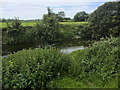 ST9267 : River Avon, East of Lacock by David Dixon