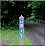 NO2407 : Cycle route direction post, Lomond Hills by Bill Kasman