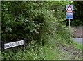 ST5763 : Dark Lane by Neil Owen
