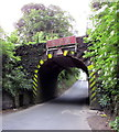 ST9898 : East side of a railway bridge north of Kemble by Jaggery