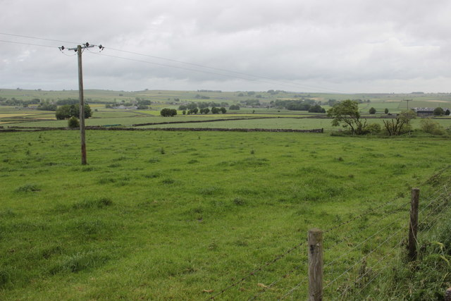 Fields Near Pomeroy