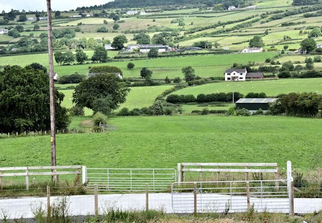 Gates and fields, Ballybracken, Ballynure/Larne (July 2017)