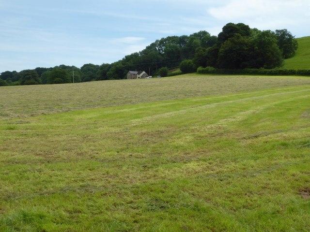 Field at Farlow