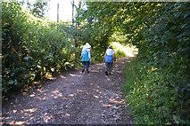 ST0007 : Mid Devon : Russel Lane by Lewis Clarke
