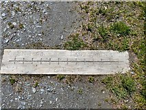 SS6441 : Lynton and Barnstaple Railway – Commemorative Carving by Barrie Cann