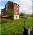 ST2938 : Standish Street flats, Bridgwater by Jaggery