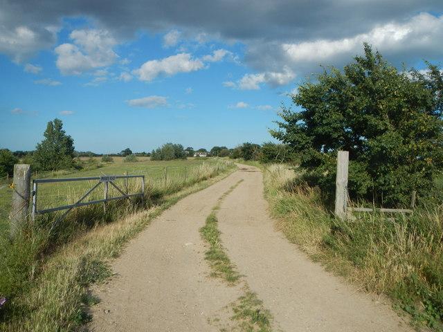 Track to St Osyth Lodge Farm