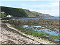 NT9660 : Burnmouth Bay from Cowdrait by M J Richardson