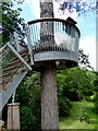ST8589 : The Crows Nest, Stihl Treetop Walkway by Oliver Dixon