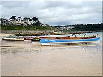SW8031 : Racing Gigs on Gyllyngvase Beach Falmouth by Roy Hughes