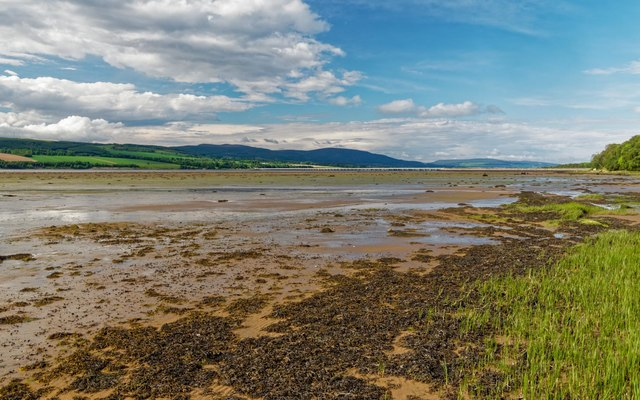 Cromarty Firth Mud Flats