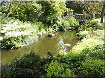 TR0660 : Part of the Rock Garden at Mount Ephraim Gardens by Marathon